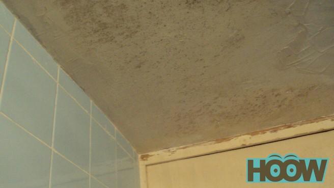 C mo reducir o quitar la humedad de casa hoow com - Como quitar la humedad de una pared ...